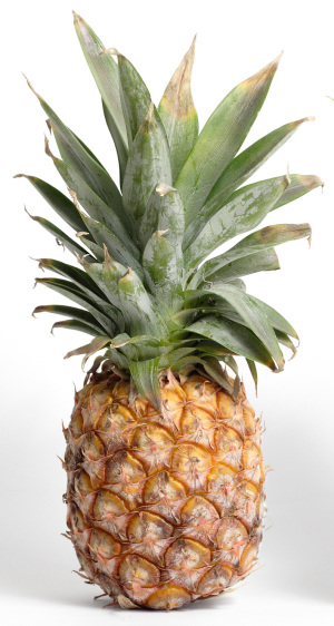 BJ-pineapple